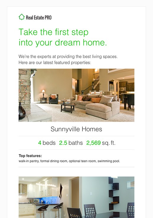 Real Estate Pro Newsletter Template